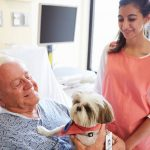 Pets at Adult Family Homes